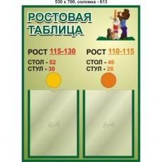 """Стенд """"Ростовая таблица"""""""